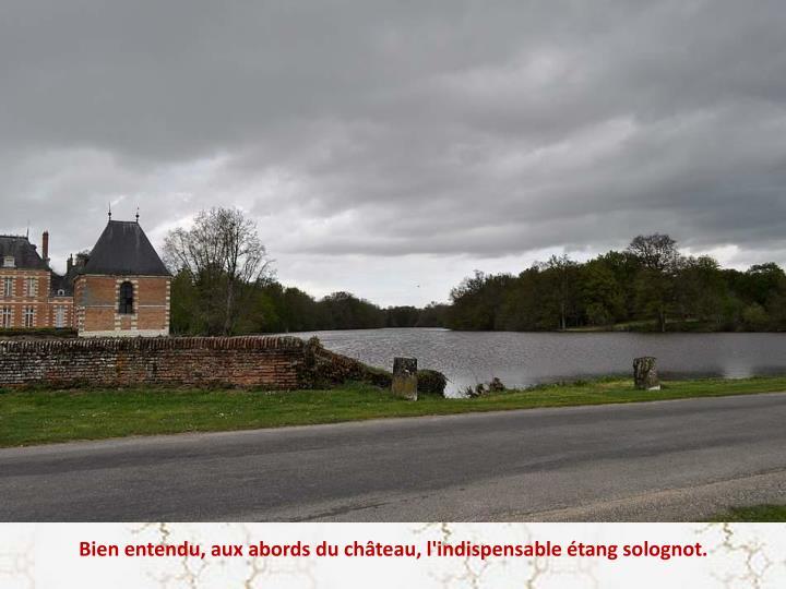 Bien entendu, aux abords du château, l'indispensable étang solognot.