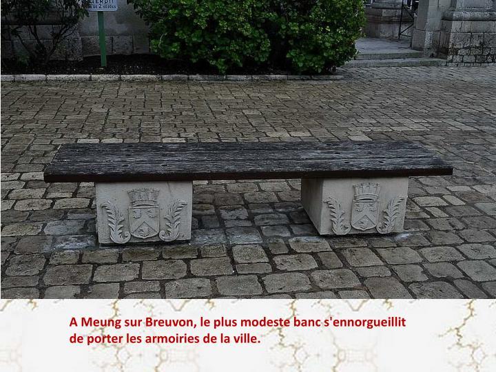 A Meung sur Breuvon, le plus modeste banc s'ennorgueillit de porter les armoiries de la ville.