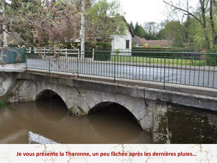 Je vous présente la Tharonne, un peu fâchée après les dernières pluies…