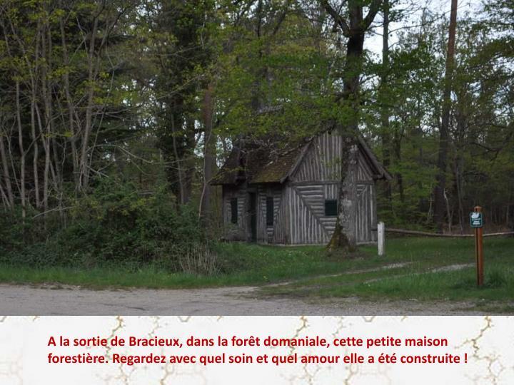 A la sortie de Bracieux, dans la forêt domaniale, cette petite maison forestière. Regardez avec quel soin et quel amour elle a été construite !
