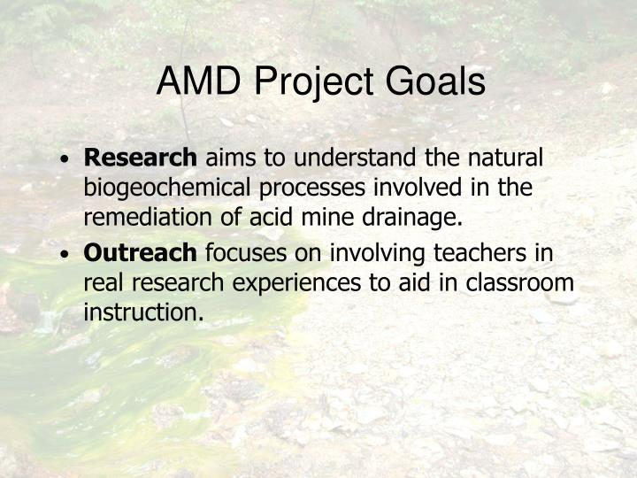 AMD Project Goals