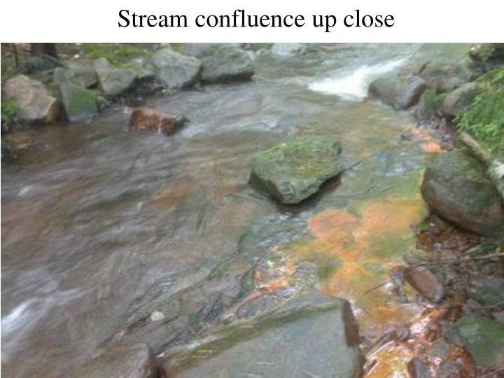 Stream confluence up close