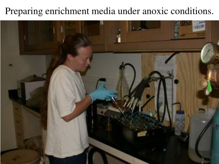 Preparing enrichment media under anoxic conditions.