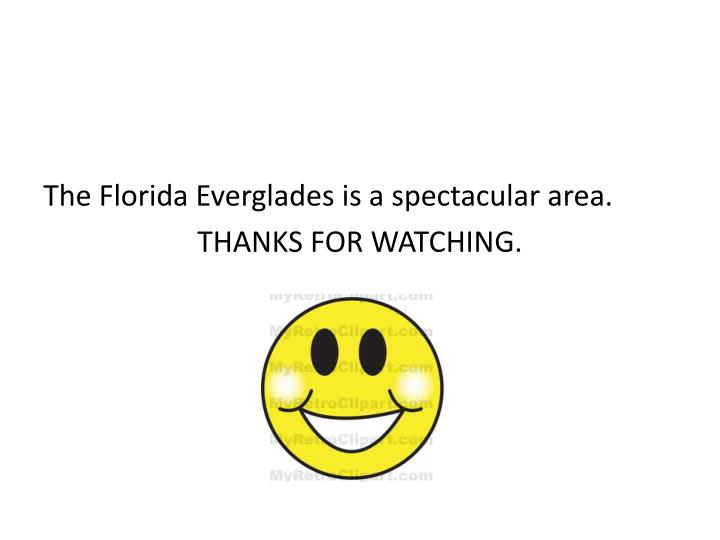 The Florida Everglades is a spectacular area.