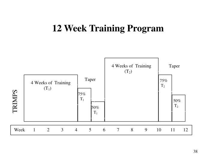 12 Week Training Program