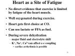 heart as a site of fatigue