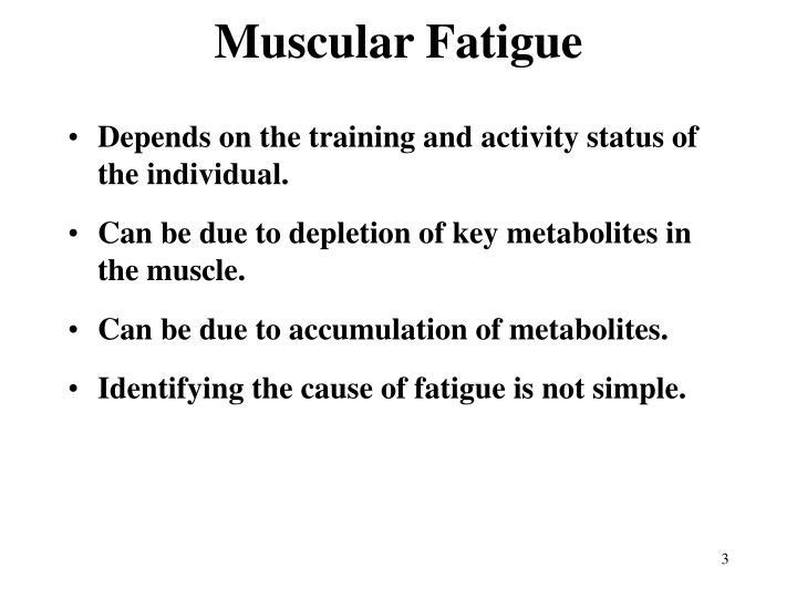 Muscular Fatigue