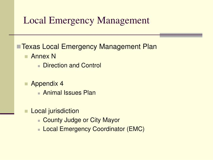 Texas Local Emergency Management Plan