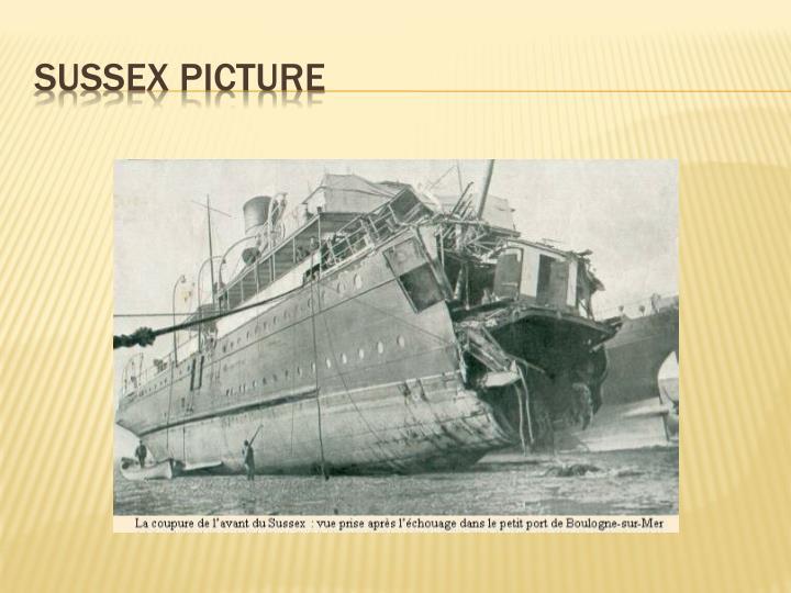 Sussex picture