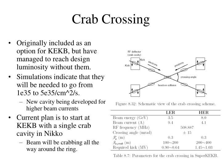 Crab Crossing