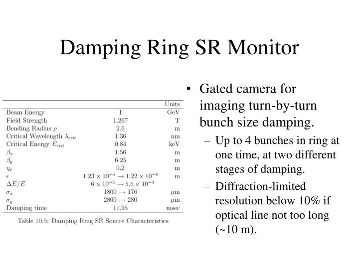 Damping Ring SR Monitor