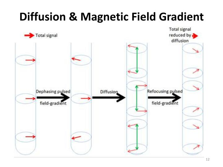 Diffusion & Magnetic Field Gradient