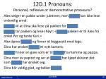 12d 1 pronouns personal reflexive or demonstrative pronouns