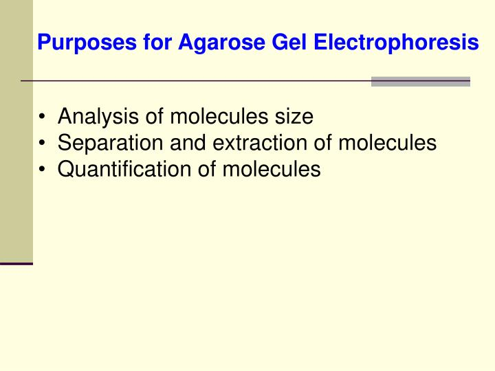 how to make tae buffer for gel electrophoresis