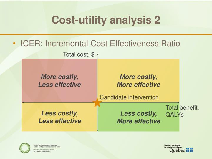 Cost-utility analysis 2