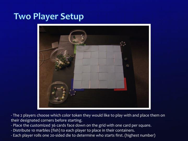 Two Player Setup