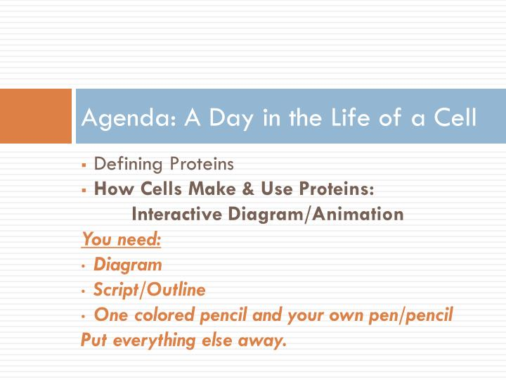 Agenda: A Day in the Life of a Cell