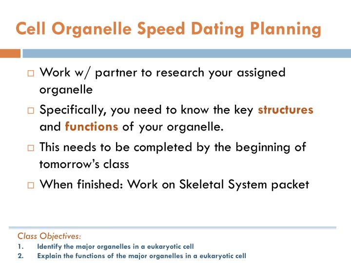 Cell Organelle Speed Dating Planning