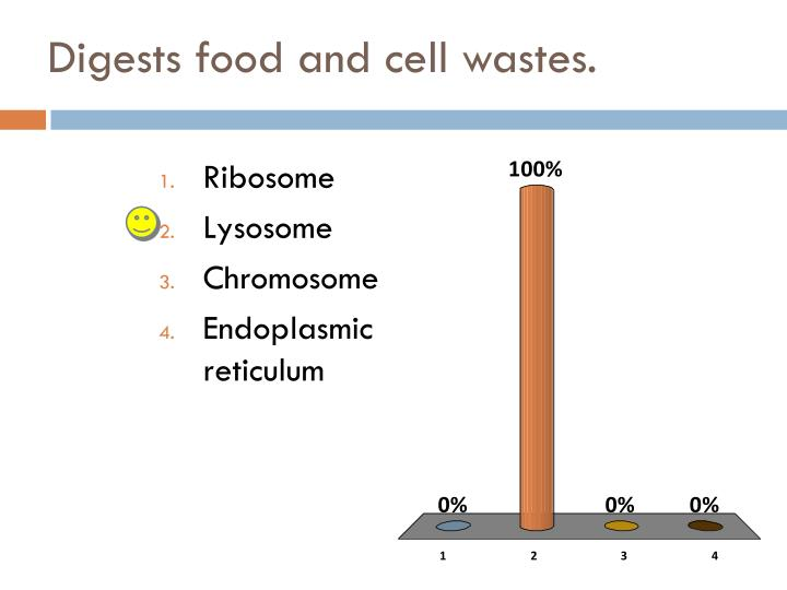 Digests food and cell wastes.