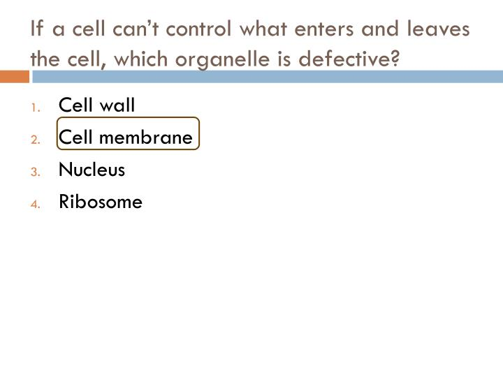 If a cell can't control what enters and leaves the cell, which organelle is defective?