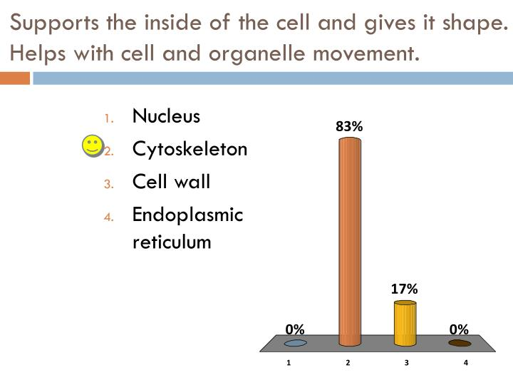 Supports the inside of the cell and gives it shape.  Helps with cell and organelle movement.