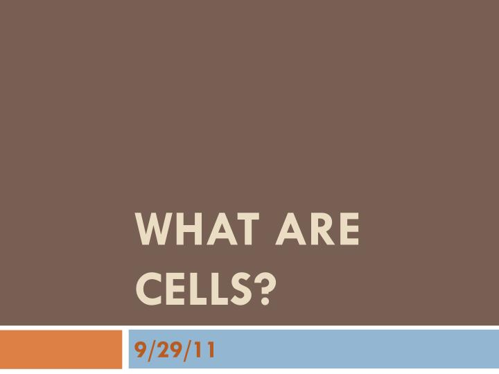 What are Cells?