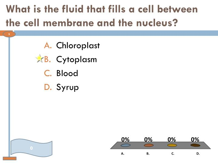 What is the fluid that fills a cell between the cell membrane and the nucleus?