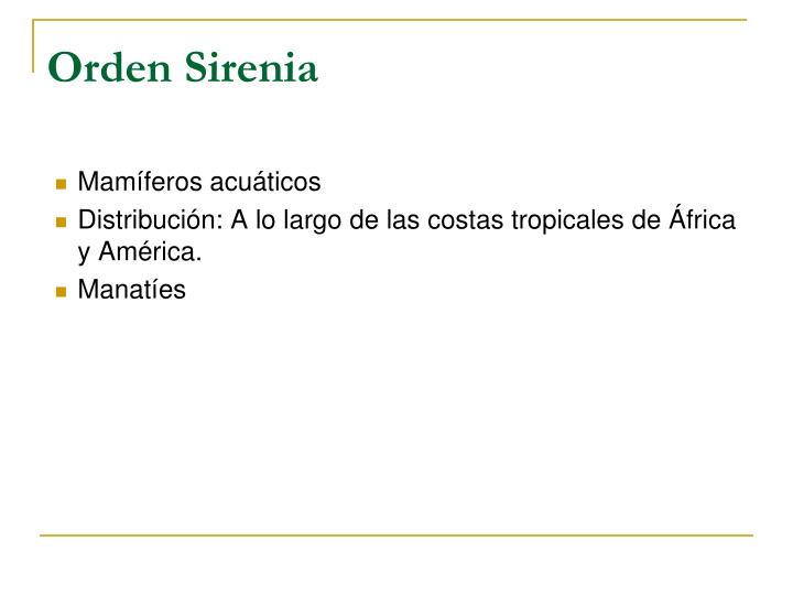 Orden Sirenia
