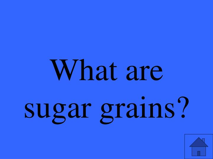 What are sugar grains?