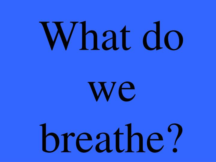 What do we breathe?