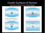 coralin surfaces of section1