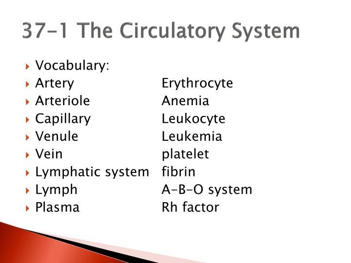 37-1 The Circulatory System