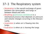 37 3 the respiratory system