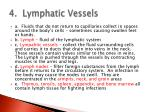 4 lymphatic vessels