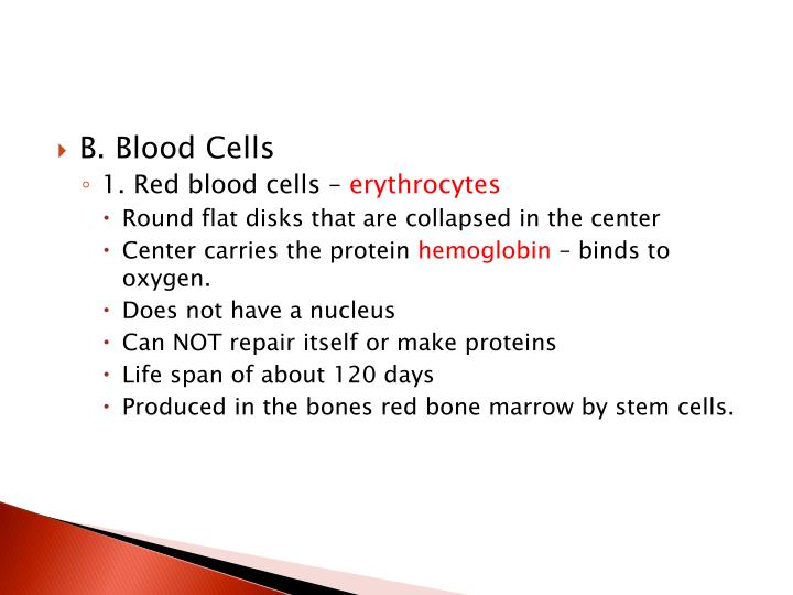 B. Blood Cells