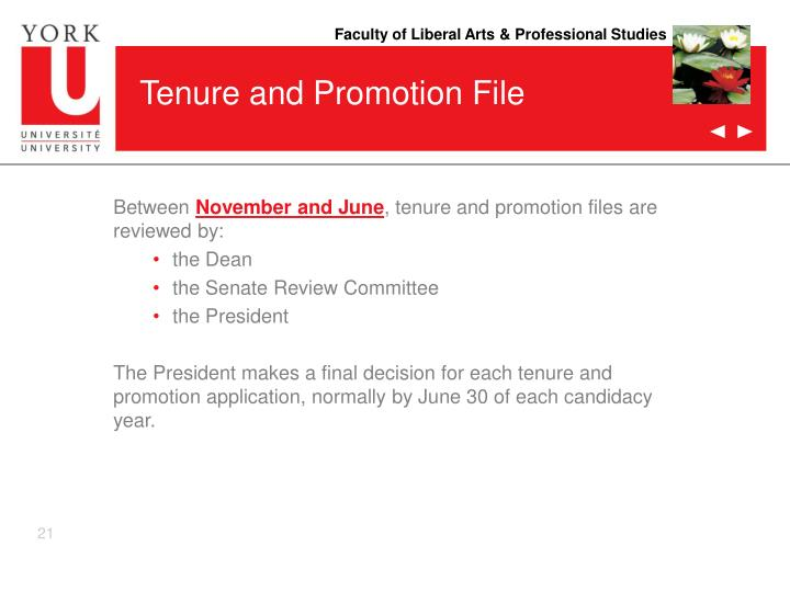 Tenure and Promotion File