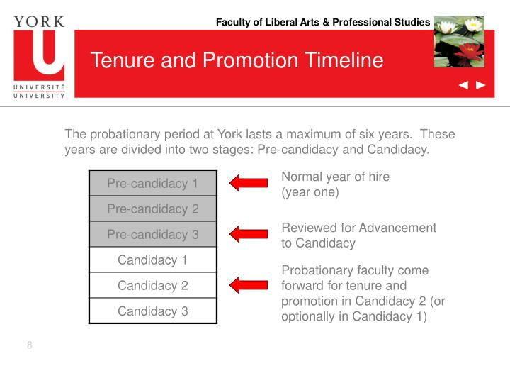 Tenure and Promotion Timeline