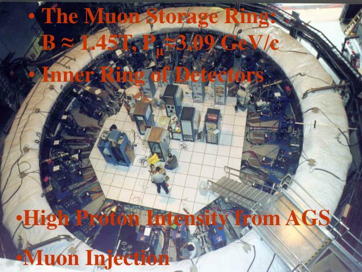 The Muon Storage Ring:             B