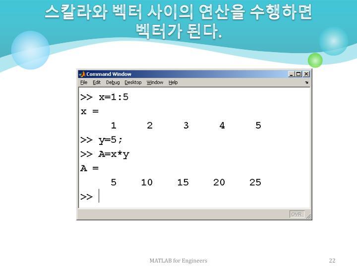 스칼라와 벡터 사이의 연산을 수행하면 벡터가 된다
