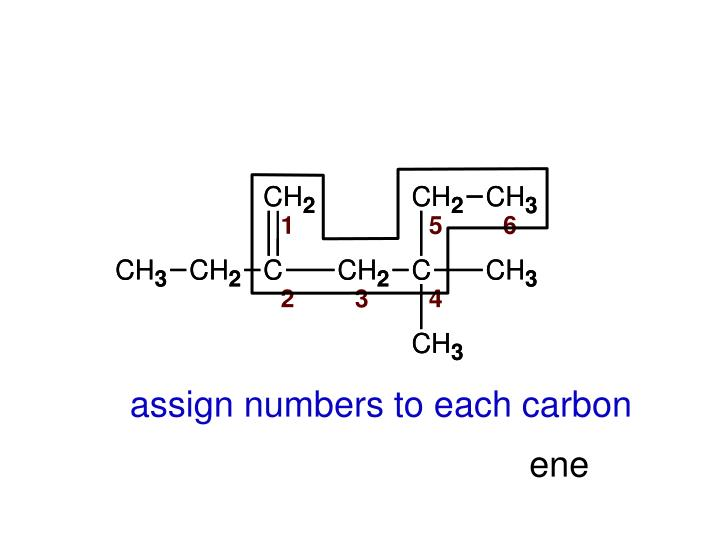 assign numbers to each carbon