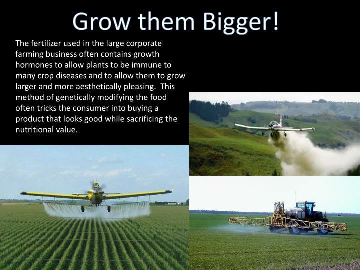 Grow them Bigger!