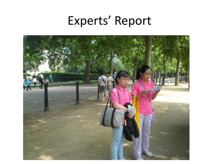 Experts' Report