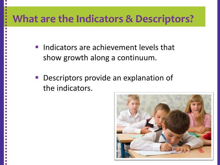 What are the Indicators & Descriptors?