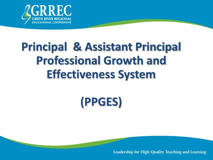 Principal  & Assistant Principal Professional
