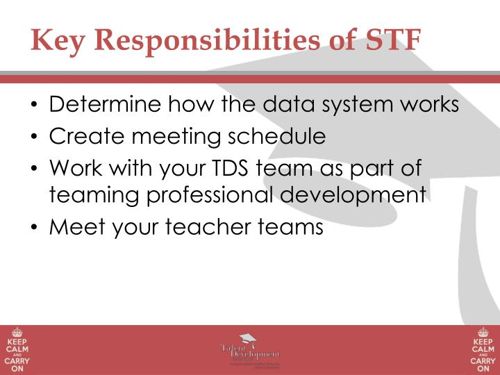 Key Responsibilities of STF