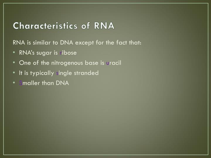 Characteristics of RNA
