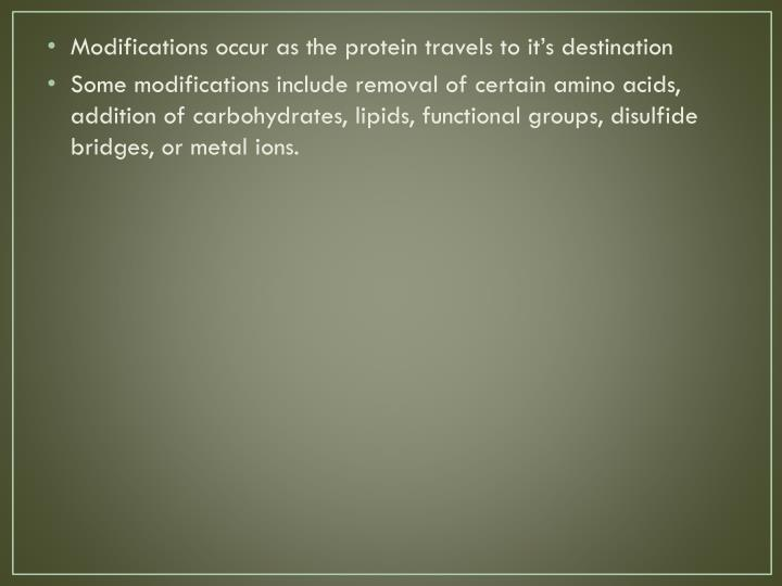 Modifications occur as the protein travels to it's destination