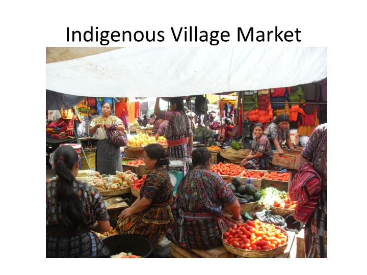 Indigenous Village Market