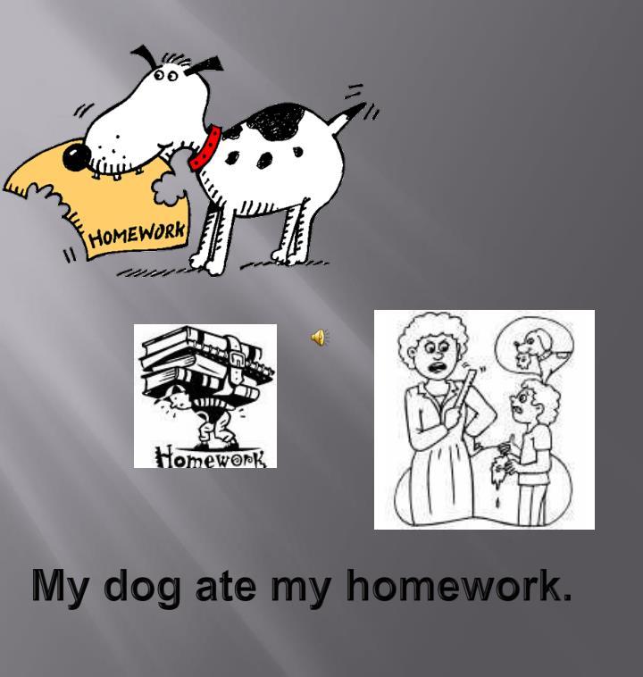 My dog ate my homework.