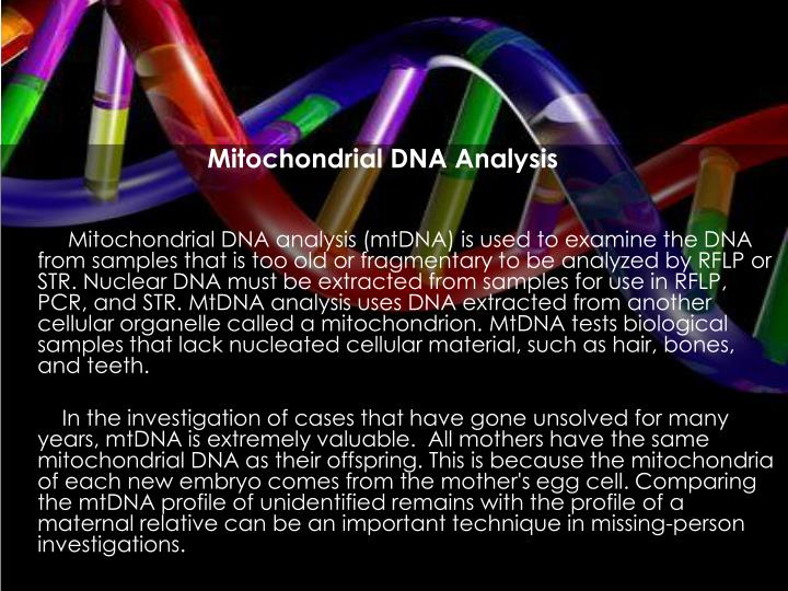 Mitochondrial DNA Analysis